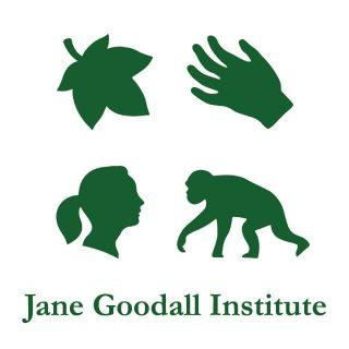 Un projet soutenu par Jane Goodall Institute