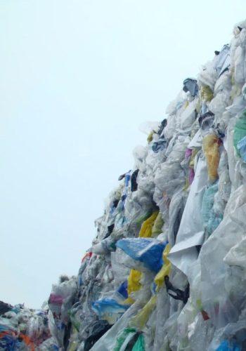 Faut-il jeter le Recyclage ? Un documentaire inédit de CITEO