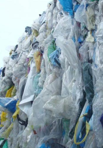 Faut-il jeter le Recyclage ? Un documentaire inédit de CITEO.
