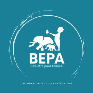 Un projet soutenu par BEPA