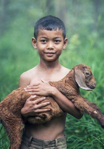 Soutenez la BEPA pour sensibiliser sur le bien-être animal.